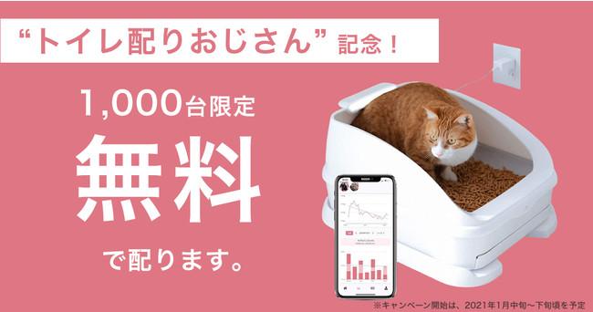 ねこ用IoTトイレ「toletta(トレッタ)」